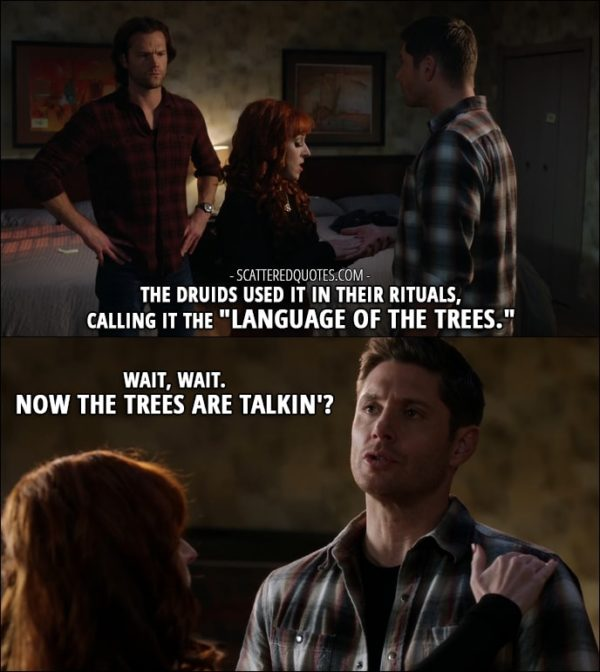 "30 Best Supernatural Quotes from 'Regarding Dean' (12x11) - Rowena: The Druids used it in their rituals, calling it the ""Language of the Trees."" Dean Winchester: Wait, wait. Now the trees are talkin'?"