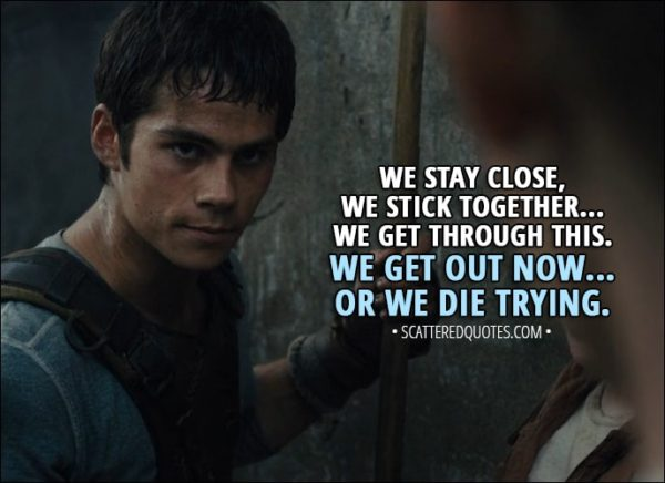 Quote from The Maze Runner (2014) - Thomas: We stay close, we stick together... we get through this. We get out now... or we die trying.