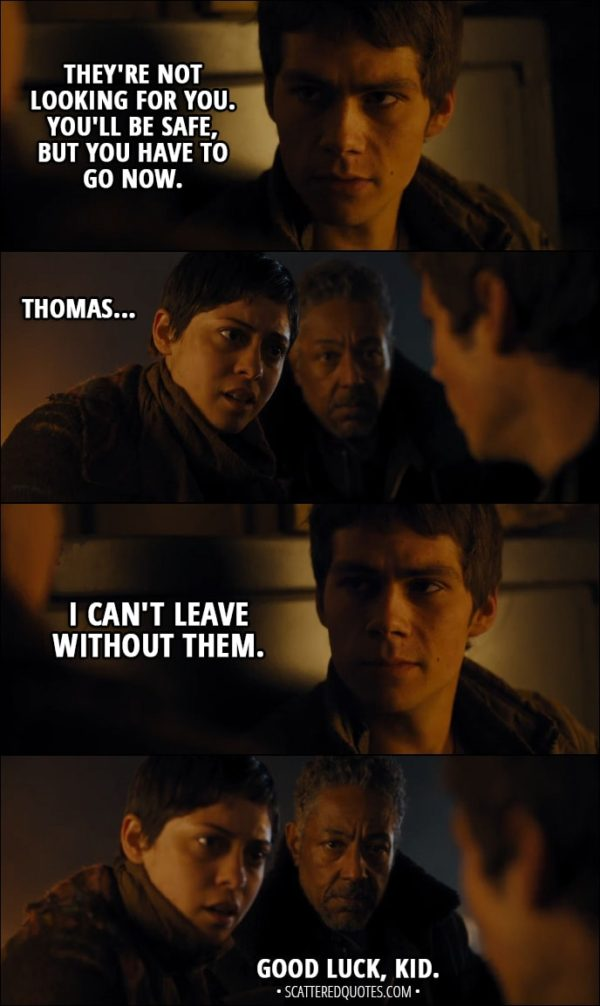 Quote from Maze Runner: The Scorch Trials (2015) - Thomas: They're not looking for you. You'll be safe, but you have to go now. Brenda: Thomas... Thomas: I can't leave without them. Jorge: Good luck, kid.