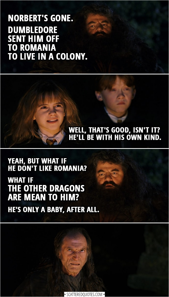 Quotes from Harry Potter and the Sorcerer's Stone (2001) - Argus Filch: Oh, good God, man, you're not still on about that bloody dragon, are you? Rubeus Hagrid: Norbert's gone. Dumbledore sent him off to Romania to live in a colony. Hermione Granger: Well, that's good, isn't it? He'll be with his own kind. Rubeus Hagrid: Yeah, but what if he don't like Romania? What if the other dragons are mean to him? He's only a baby, after all. (Filch rolls his eyes)