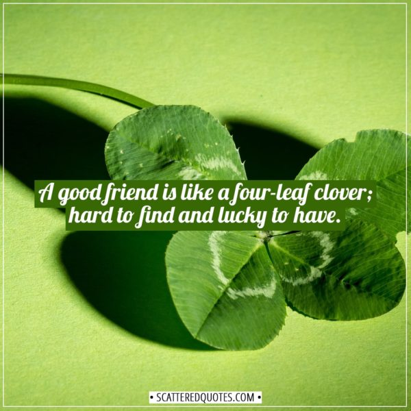 Friendship quotes | A good friend is like a four-leaf clover; hard to find and lucky to have. - (Irish Proverb)