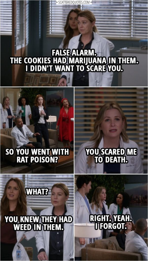Quote from Grey's Anatomy 14x20 | Meredith Grey: Please raise your hand if you ate any cookies from this tin. Unfortunately, the cookies in this tin were tainted with rat poison. So we need to treat those of you who have ingested them as soon as possible, please. (They get everyone into one room...) Meredith Grey: Okay. False alarm. The cookies had marijuana in them. Catherine Avery: What?! Meredith Grey: Yes. I didn't want to scare you. Jackson Avery: So you went with rat poison? Arizona Robbins: You scared me to death. Jo Wilson: What? Meredith Grey: You knew they had weed in them. Arizona Robbins: Right. Yeah. I-I forgot.