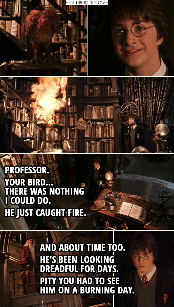 Quotes from Harry Potter and the Chamber of Secrets (2002) | Harry Potter: Professor. Your bird... There was nothing I could do. He just caught fire. Albus Dumbledore: And about time too. He's been looking dreadful for days. Pity you had to see him on a burning day. Fawkes is a phoenix, Harry. They burst into flame when it is time for them to die... and then they are... reborn from the ashes. Fascinating creatures, phoenixes. They can carry immensely heavy loads. Their tears have healing powers.