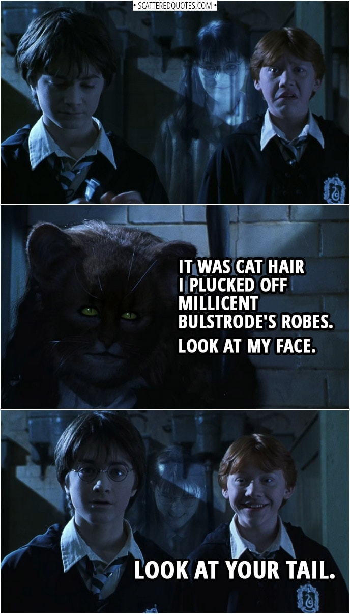 Quotes from Harry Potter and the Chamber of Secrets (2002) | Hermione Granger: Do you remember me telling you... that the Polyjuice Potion was only for human transformations? It was cat hair I plucked off Millicent Bulstrode's robes. Look at my face. Ron Weasley: Look at your tail.