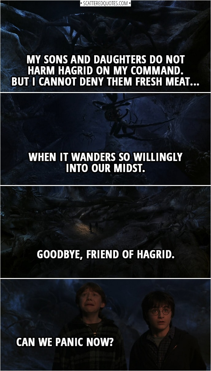 Quotes from Harry Potter and the Chamber of Secrets (2002) | Aragog: My sons and daughters do not harm Hagrid on my command. But I cannot deny them fresh meat... when it wanders so willingly into our midst. Goodbye, friend of Hagrid. Ron Weasley: Can we panic now?