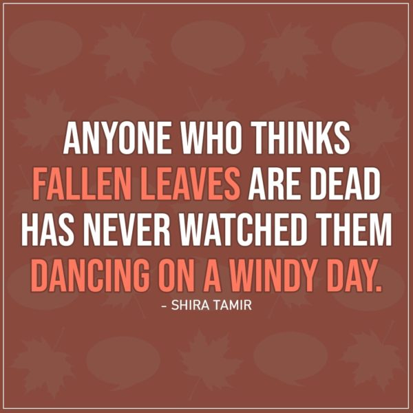 Quote about Fall | Anyone who thinks fallen leaves are dead has never watched them dancing on a windy day. - Shira Tamir