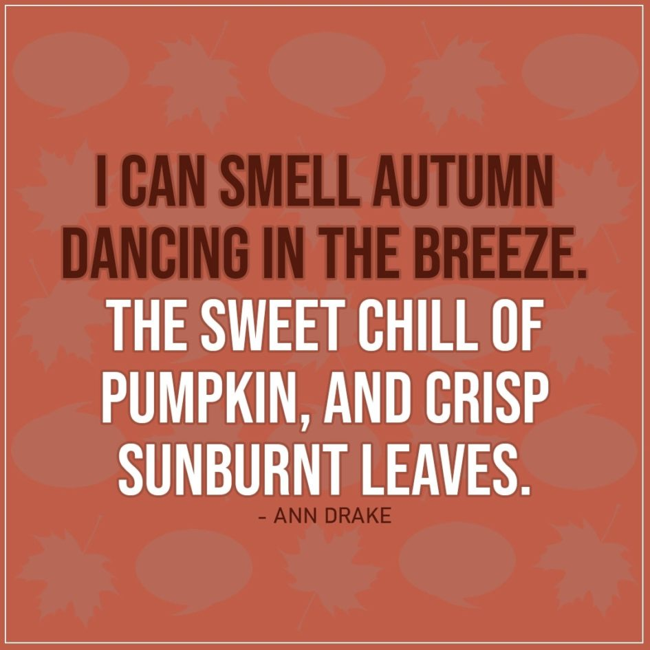 Quote about Fall | I can smell autumn dancing in the breeze. The sweet chill of pumpkin, and crisp sunburnt leaves. - Ann Drake