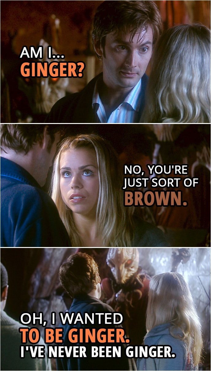 Quote from Doctor Who 2x00 | Doctor: Am I...ginger? Rose Tyler: No, you're just sort of brown. Doctor: Oh, I wanted to be ginger. I've never been ginger.