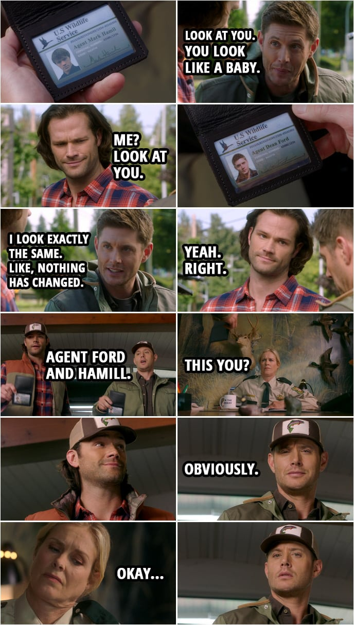 Quote from Supernatural 15x05 | Dean Winchester: Look at you. You look like a baby. Sam Winchester: Me? Look at you. Dean Winchester: What? I look exactly the same. Like, nothing has changed. It's... Nothing's changed. Sam Winchester: Yeah. Right. (At the Sheriff's office... showing off their badges...) Dean Winchester: Fish and Wildlife, Agent Ford and Hamill. Sheriff: This you? Dean Winchester: Obviously.