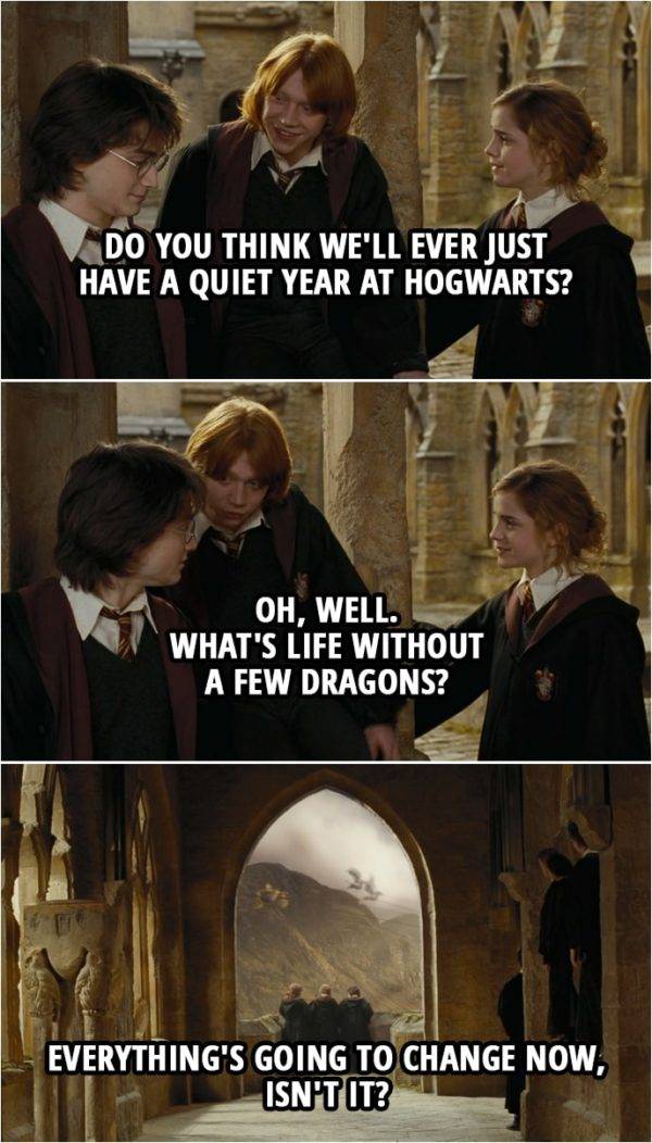 Quote from Harry Potter and the Goblet of Fire (2005) | Ron Weasley: Do you think we'll ever just have a quiet year at Hogwarts? Hermione Granger: No. Harry Potter: No. Ron Weasley: No, I didn't think so. Oh, well. What's life without a few dragons? Hermione Granger: Everything's going to change now, isn't it? Harry Potter: Yes.
