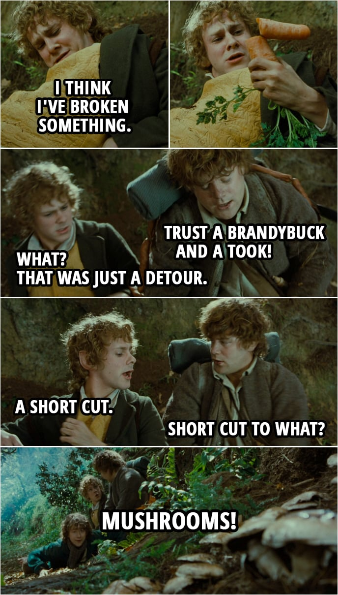 Quote from The Lord of the Rings: The Fellowship of the Ring (2001) | Merry: I think I've broken something. Sam: Trust a Brandybuck and a Took! Merry: What? That was just a detour. A short cut. Sam: Short cut to what? Pippin: Mushrooms!