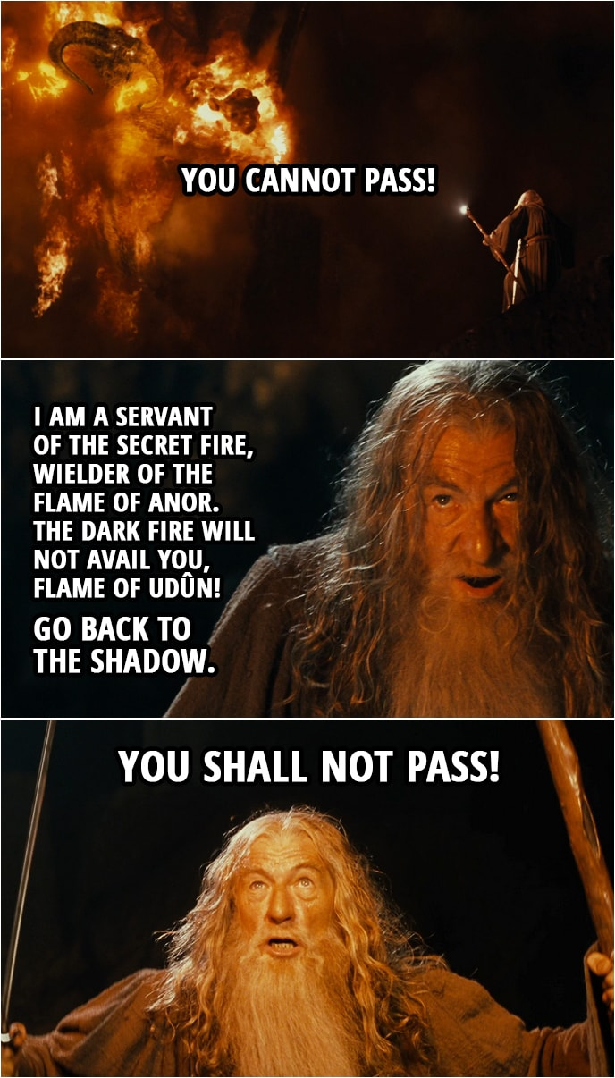 Quote from The Lord of the Rings: The Fellowship of the Ring (2001) | Gandalf: You cannot pass! I am a servant of the Secret Fire, wielder of the flame of Anor. The dark fire will not avail you, flame of Udûn! Go back to the Shadow. You shall not pass!