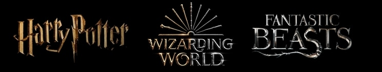 Wizarding World Quotes