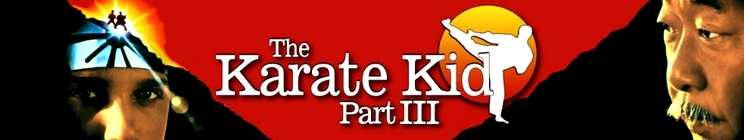 The Karate Kid Part III Quotes