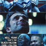 Quote from The Falcon and The Winter Soldier 1x06 | Bystander: Hell, yeah! That's the Black Falcon there. I tell you. Another bystander: Nah, that's Captain America.