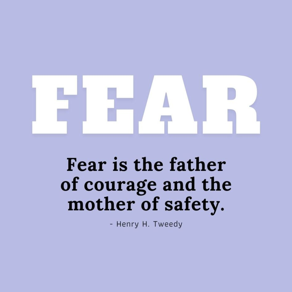 Quote about Fear   Fear is the father of courage and the mother of safety. - Henry H. Tweedy